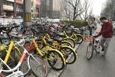 TP HCM nghiên cứu mô hình chia sẻ xe đạp thông minh