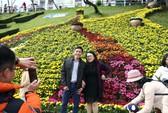 Đà Lạt ế ẩm khách dịp Festival hoa