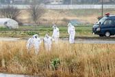 Nhật lập đội đặc nhiệm truy tìm kẻ sát hại bé gái Việt