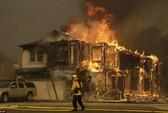 Cháy rừng ở California dữ dội nhất trong lịch sử
