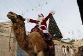 Ông già Noel cai ngục và ông già Noel cưỡi lạc đà sưởi ấm Giáng sinh