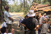 Chủ tịch xã cúi đầu xin lỗi dân vì để xảy ra phá rừng