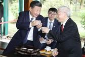 Tổng Bí thư Nguyễn Phú Trọng và Tổng Bí thư, Chủ tịch Tập Cận Bình dự tiệc trà