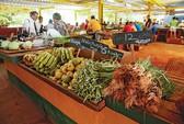 Cơ hội đưa thực phẩm, dệt may, hàng tiêu dùng... sang Cuba