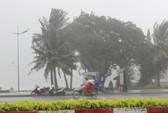 Bão số 9 đã vào Bà Rịa - Vũng Tàu, mưa rất to, cây ngã đổ, tàu chìm