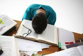 Ký túc xá cần mở phòng tư vấn tâm lý vì sinh viên stress quá nhiều