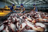 Thị trường Trung Quốc ngày càng khắt khe