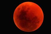 Người dân TP HCM thích thú ngắm siêu trăng và nguyệt thực toàn phần