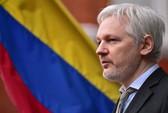 Ecuador cắt internet của ông chủ Wikileaks