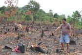 Mạnh tay xử lý sai phạm đất đai ở Phú Quốc