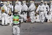 Thêm 3 thực tập sinh Việt Nam bị đưa đi dọn phóng xạ ở Nhật Bản?