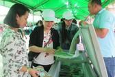 TP HCM liên kết ĐBSCL xây chuỗi nông sản