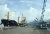 Sau lùm xùm, cảng Quy Nhơn thay đổi hàng loạt nhân sự