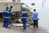 Ngồi trên sà lan hoảng hốt thấy thi thể nổi trên sông Sài Gòn