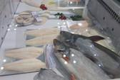 Sau khi cá rô phi thất thế ở Mỹ, Trung Quốc đẩy mạnh nuôi cá tra