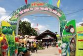 Đậm đà chất phương Nam tại Lễ hội trái cây Nam Bộ 2019