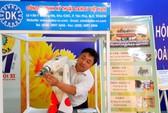 """CNVC-LĐ TP HCM  hào hứng với triển lãm """"Tự hào công nhân thành phố anh hùng"""""""