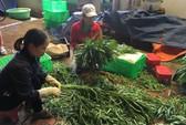 TP HCM nhập nông sản,