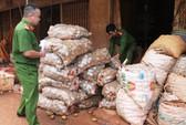 Bắt quả tang nhiều sạp phù phép khoai tây Trung Quốc thành hàng Đà Lạt