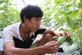 Khởi nghiệp nông nghiệp khó gọi vốn