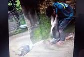 Trộm chó bị dân vây bắt, đánh hội đồng và cột chó vào cổ