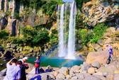 12 trải nghiệm kỳ thú ở đảo Jeju