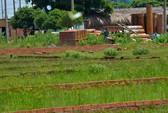 Quay cuồng trong cơn sốt đất: Giá đất tăng phi mã