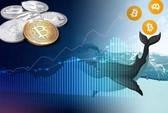 'Cá voi' thức giấc - thị trường Bitcoin sắp biến động lớn?