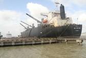 Cảng Quy Nhơn: Quá chậm thu hồi cổ phần chuyển nhượng sai