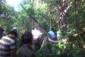Người đàn ông mất tích nhiều ngày, thi thể được phát hiện trong rừng sâu