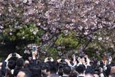 Du lịch Nhật Bản chi phí thấp