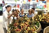 200.000 đồng chỉ mua được 12 trái vải thiều hữu cơ
