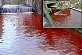 Sau một đêm, nước sông biến thành máu