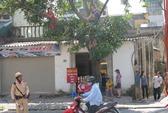 Hà Nội: Phản đối chặt cây, 2 phụ nữ leo lên cây nhai bánh mì