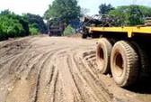 Đường hư hỏng nặng vì xe chở gỗ