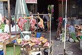Hà Nội: Cấm bán thịt chó không có kiểm dịch thú y