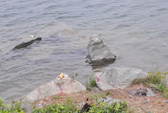 TPHCM: Thi thể nam thanh niên nổi lềnh bềnh trên mặt hồ đá