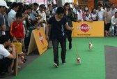 TPHCM: Chó đẹp tranh tài