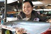 Ngư dân Chắc Cà Đao được mùa cá bông lau