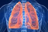 Chuyển tế bào gốc thành tế bào phổi