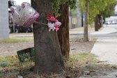 Bé trai 8 tuổi lái xe hơi chở em gái gặp nạn