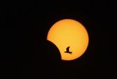 Chiêm ngưỡng nhật thực lai hiếm có