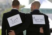 Tại sao con người bị đồng tính luyến ái?
