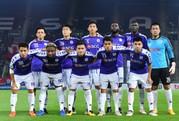 V-League trông chờ hiệu ứng đội tuyển