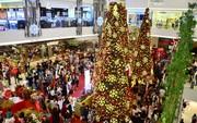 Ngắm những cây thông Noel lung linh tại TP HCM
