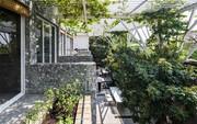Vườn rau gần 600 m2 ở TP HCM giành giải kiến trúc quốc tế