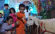 Không khí Noel ở những xóm đạo lớn nhất Sài Gòn