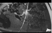 """Bị khủng bố sau khi gửi đơn tố cáo: Nhận được cuộc gọi""""lạ"""""""