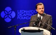 Tài tử Leonardo DiCaprio thành công lớn trong từ thiện