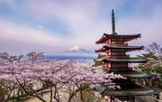 15 bức ảnh du lịch đẹp nhất năm 2018